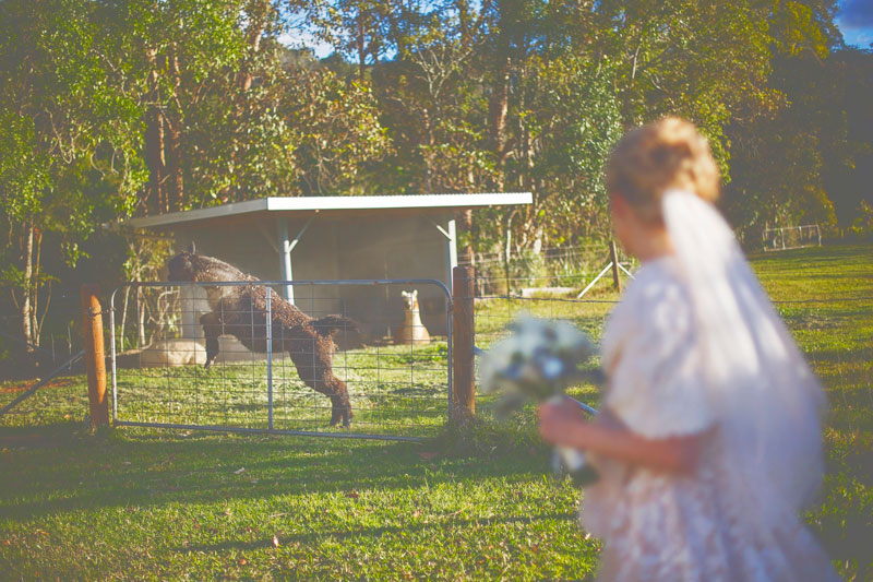 byron-bay-hinterland-wedding-147