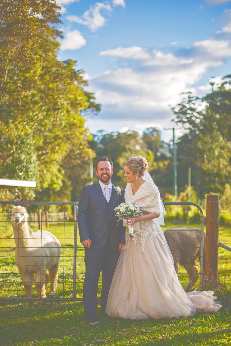 byron-bay-hinterland-wedding-154