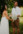 sunshine coast elopements